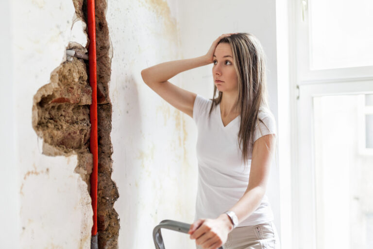 House and Property Inspection Report validation by women